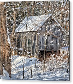New England Winter Woods Square Acrylic Print by Bill Wakeley