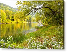 New Englands Early Autumn Acrylic Print by Karol Livote