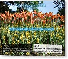 New Heavens New Earth Acrylic Print
