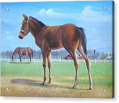 Acrylic Print featuring the painting New Kid In Town. by Oz Freedgood