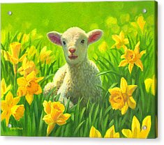 New Life In Spring Acrylic Print by David Price