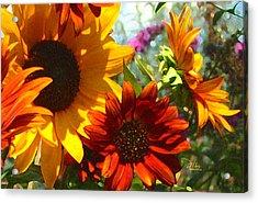 New Mexico Summer Sunflower Garden Acrylic Print
