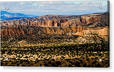 Acrylic Print featuring the photograph New Mexico View by Atom Crawford