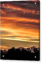 New Normal Acrylic Print by Christy Usilton