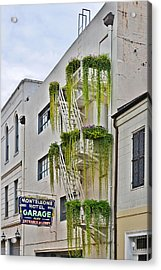New Orleans Balcony Gardens Acrylic Print by Christine Till