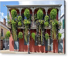 New Orleans City Jungle Acrylic Print by Christine Till