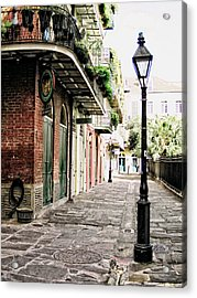 Acrylic Print featuring the photograph New Orleans Cobblestone by Heather Green