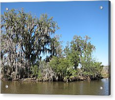 New Orleans - Swamp Boat Ride - 1212132 Acrylic Print