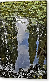 Reflections Amongst The Lily Pads Acrylic Print