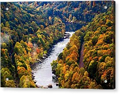 New River Gorge Acrylic Print by B Wayne Mullins