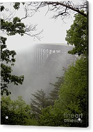 New River Gorge Bridge Acrylic Print by Tom Brickhouse