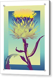 New Thistle Acrylic Print