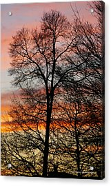 New Years Sunset Acrylic Print by Tannis  Baldwin