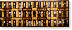 New York City Apartment Building Study Acrylic Print by Amy Cicconi
