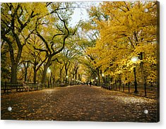 New York City - Autumn - Central Park - Literary Walk Acrylic Print by Vivienne Gucwa