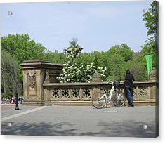 New York City - Central Park - 121210 Acrylic Print