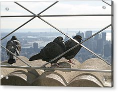 New York City - View From Empire State Building - 121224 Acrylic Print by DC Photographer