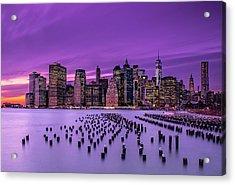 New York Violet Sunset Acrylic Print by J.g. Damlow