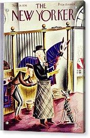 New Yorker September 26 1936 Acrylic Print