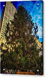 Acrylic Print featuring the photograph New York's Holiday Tree by Chris Lord