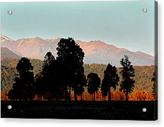 Acrylic Print featuring the photograph New Zealand Silhouette by Amanda Stadther