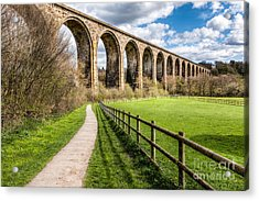 Newbridge Viaduct Acrylic Print by Adrian Evans
