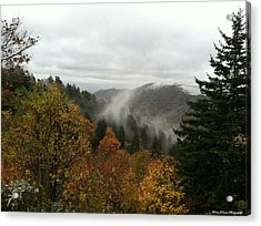 Newfound Gap Overlook Tennessee Acrylic Print by Brian Johnson