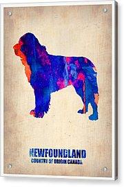 Newfoundland Poster Acrylic Print by Naxart Studio