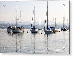 Newport Beach Bay Harbor California Acrylic Print by Paul Velgos