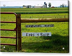 Newspapers Wanted Eggs 4 Sale Acrylic Print
