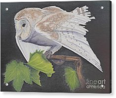 Acrylic Print featuring the painting Nght Owl by Laurianna Taylor