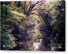 Ni River Acrylic Print by Anita Lewis