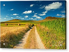 Acrylic Print featuring the photograph Nice Landscape Summer by Boon Mee