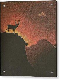 Nice View Acrylic Print by Sheila Byers