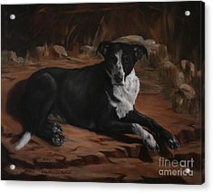 Nicky Acrylic Print by Lisa Phillips Owens