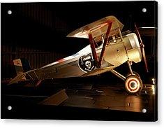 Nieuport 24 Biplane, Omaka Aviation Acrylic Print by David Wall