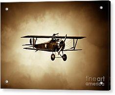 Nieuport Scout Acrylic Print