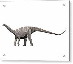 Nigersaurus Taqueti, Early Cretaceous Acrylic Print by Nobumichi Tamura