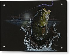 Night Bass Acrylic Print
