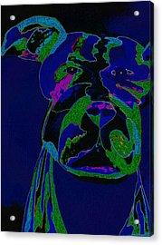 Night Boss Acrylic Print by Erica  Darknell