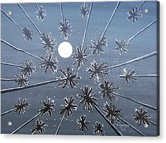 Night Dreams Acrylic Print
