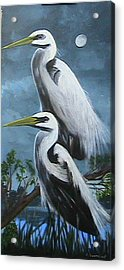 Night Egrets Acrylic Print