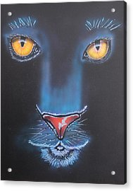 Night Eyes Acrylic Print