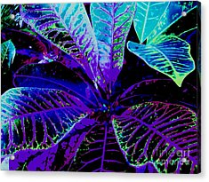 Night Falls On The Croton Acrylic Print by Ann Johndro-Collins
