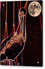Acrylic Print featuring the photograph Night Light by Robert McCubbin