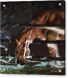 Acrylic Print featuring the digital art Night-mare by Stuart Turnbull