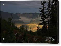 Night On Cougar Mountain Series Vi Acrylic Print