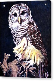 Night Owl Acrylic Print by Vivien Rhyan