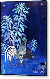 Night Rooster Acrylic Print by JCYoung MacroXscape
