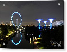 Night Shot Of Singapore Flyer Gardens By The Bay And Water Reflections Acrylic Print